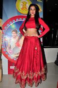 Sonal Chauhan Sizzling at Size Zero Premier-thumbnail-7