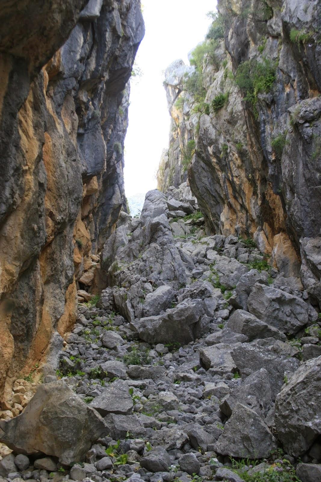 Sierra de Ubrique