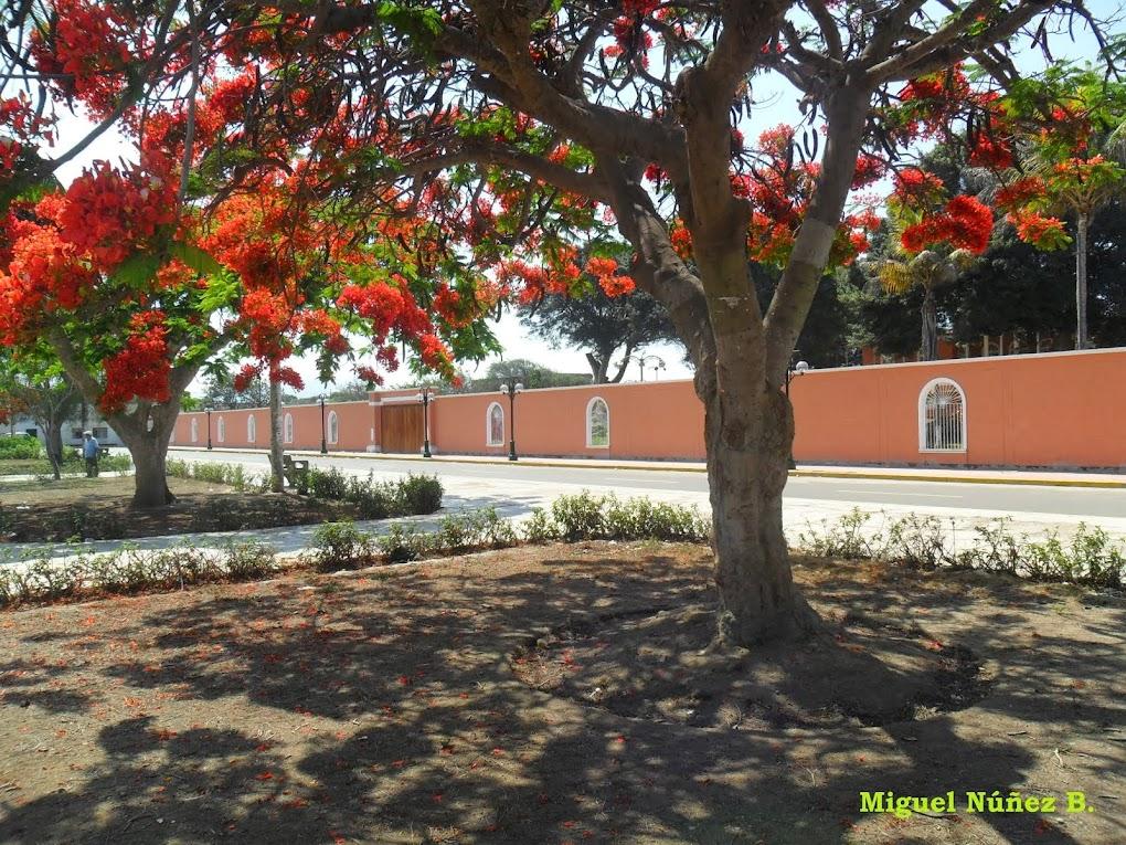Relatos en Cartavio y alrededores-Perú