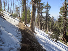Still some snow in the San Gabriels