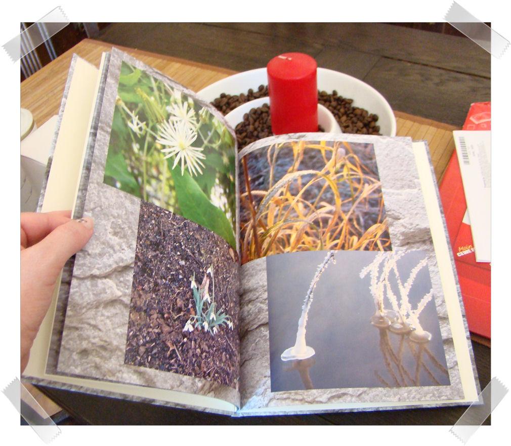 cinny home produkttest cewe fotobuch 2. Black Bedroom Furniture Sets. Home Design Ideas
