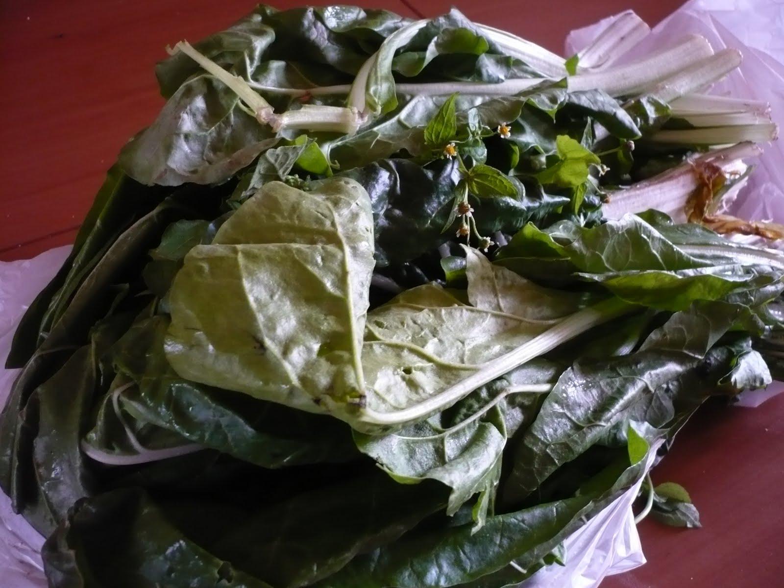 Celle qui cuisinait ou le plaisir de cuisiner quiche aux - Comment cuisiner les feuilles de blettes ...