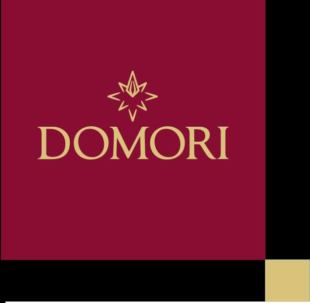 Domori Company