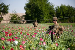 Video: Why Are We Still in Afghanistan?