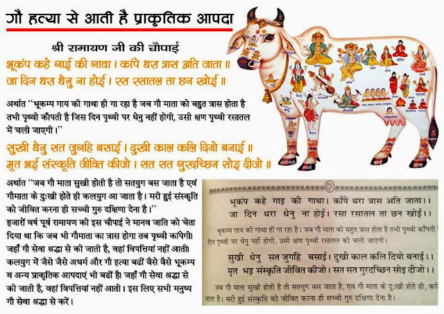 Earthquake happen due to Crimes on Cows