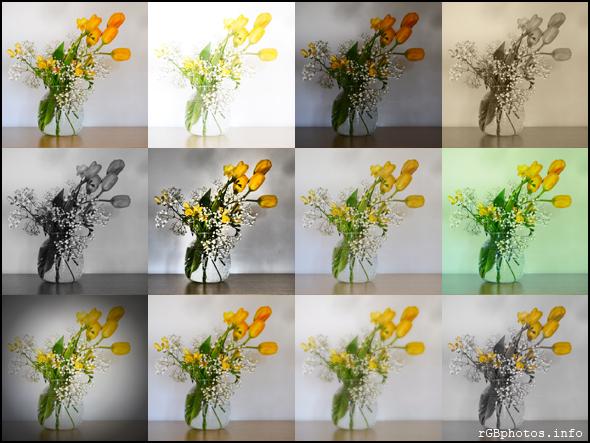Esempi dei filtri creativi della Panasonic G5