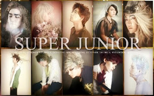 I Love Super Junior