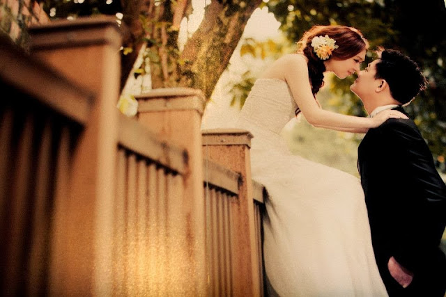 bride sitting on the fence