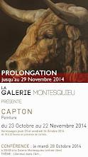 NANTES : EXPOSITION PERSONNELLE À LA GALERIE MONTESQUIEU PROLONGÉE JUSQU'AU 29 NOVEMBRE 2014