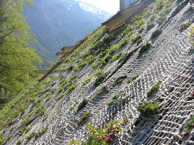 Крыша с травой. стройка