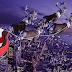 Η πλατεία Ηρώων στο Λαύριο μεταμορφώνεται σε Χριστουγεννιάτικο χωριό αύριο 27/12