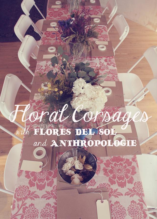 Imagenes De Flores De Sol - Imagen Flores y Sol Visor de imágenes