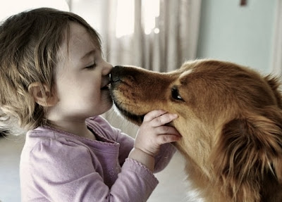 Beautiful baby girl kissing pet photos to download free