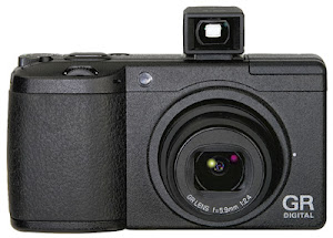 I'm using this camera for all of the photos.