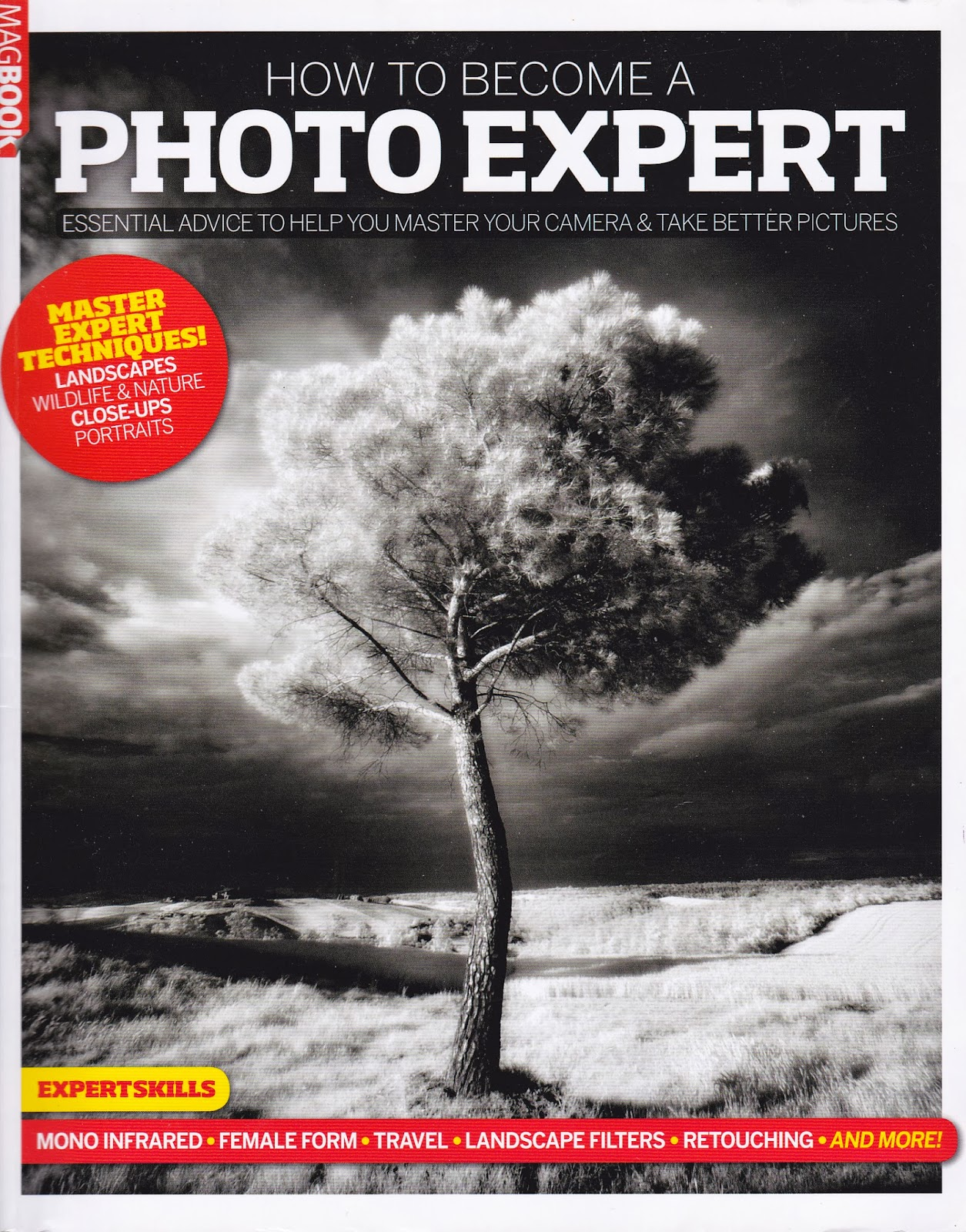 Photography: How To Become A Photo Expert