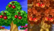 [Guía] Las frutas Cerezas