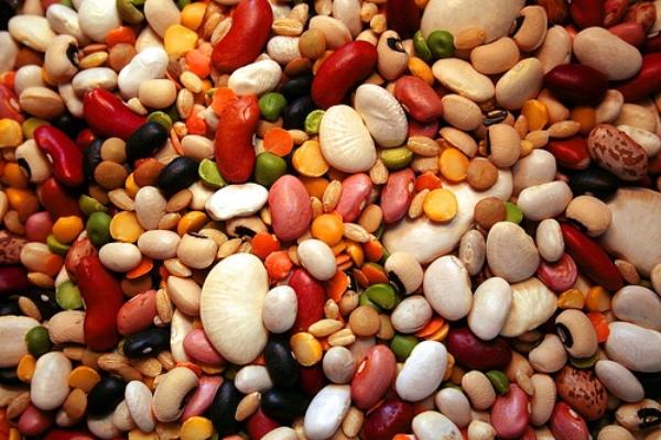 Полезные свойства фасоли