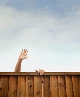 frases de dedicação pessoa dedicada perseverança sucesso alcançar buscar conseguir
