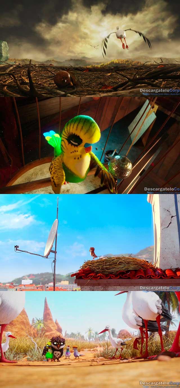 Una Cigüeña en Apuros (2017) HD 720p Latino