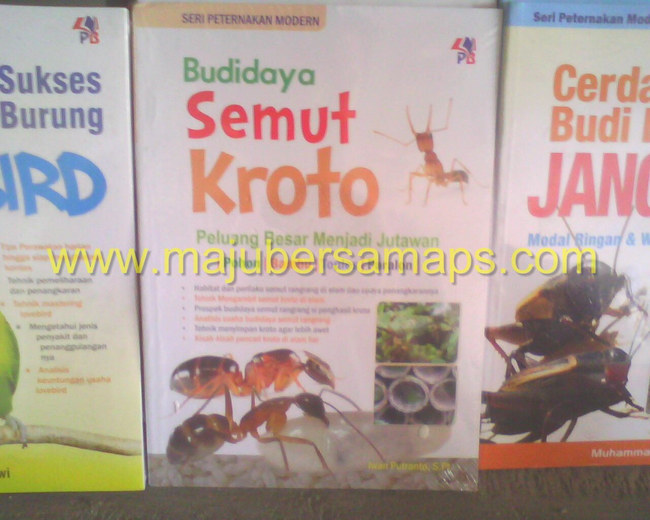 ... Buku Peternakan Online : SERI PETERNAKAN MODERN BUDIDAYA SEMUT KROTO