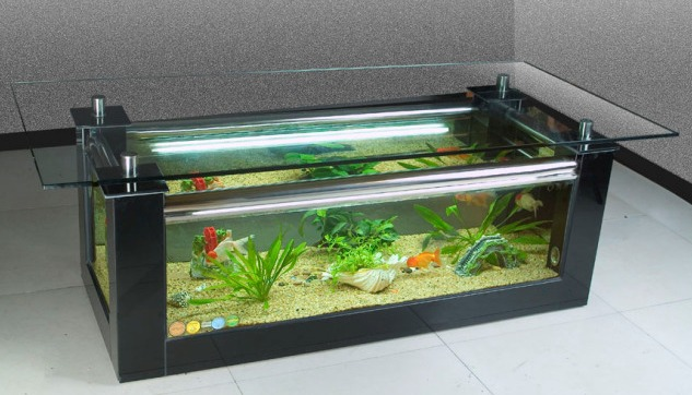 Fish Tank Sizes : 55 gallon fish tank this aquarium size can hold approximately Images ...