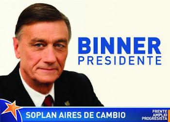 Binner Presidente 2011