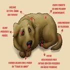 Tags 10aprendendo, asterisco, cachorro, cães, cores, darwin, dentadura, enterrar, espaço, esquecidecolocarqueelessãofeitosdeamor, evoluídos, focinho, idade, Laika, lobo, olfato, ossos, rinite, suar, velho, visão