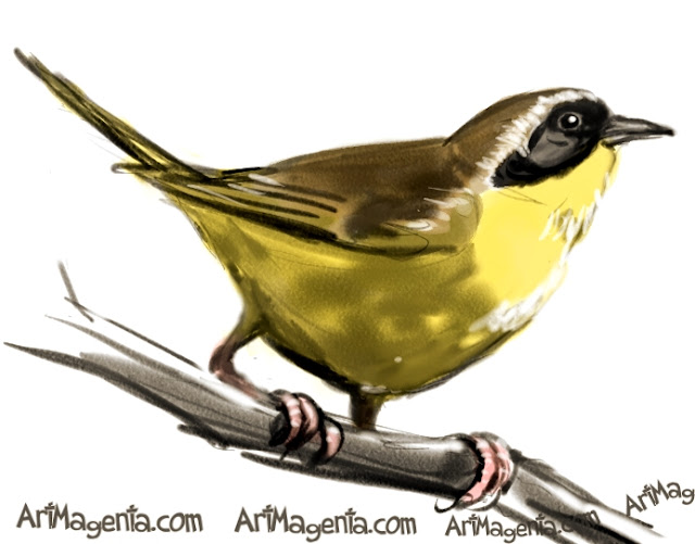 Common Yellowthroat ketch painting. Bird art drawing by illustrator Artmagenta