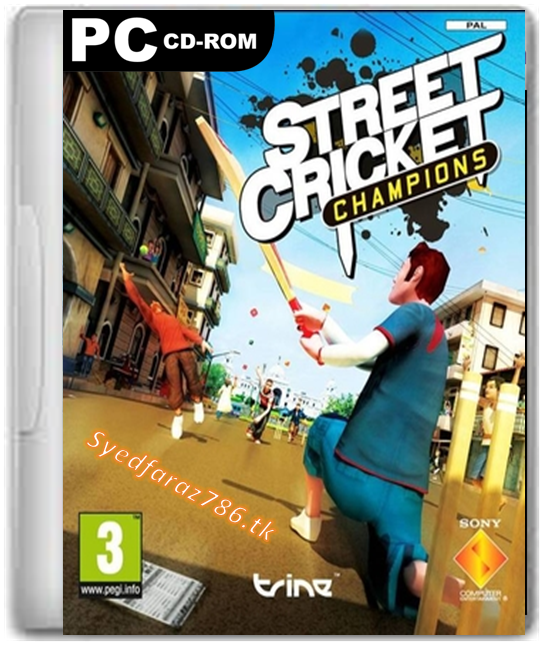 Download Street Cricket 2010 Champions Full PC Game