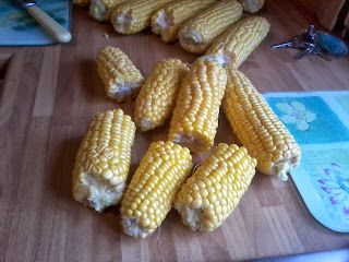 Prize and Trophy winning Sweetcorn.