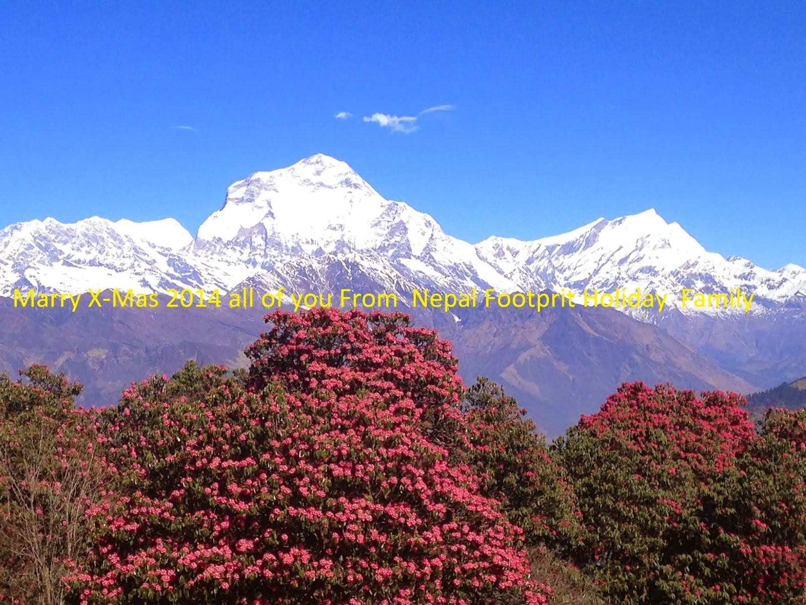 Poonhill Trek - 5 days in annapurna Loop in Nepal ...