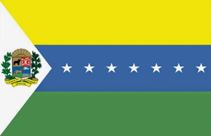 BANDERA DE APURE