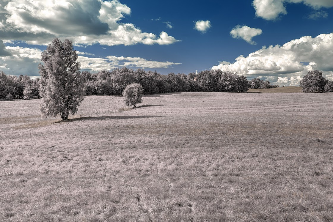 Fake infrared photo