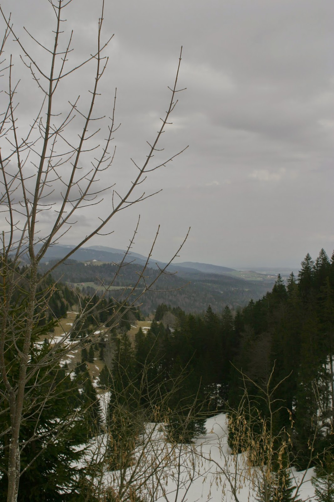 The Walk from St Cergue to La Dole by Stefan Orlowski