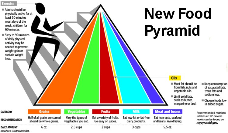 In Recognition Of March As National Nutrition Month We Thought Wed Take Some Time To Focus On The Food Pyramid Was Introduced 1992