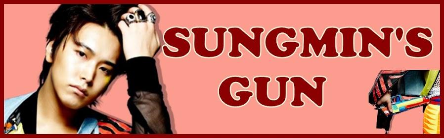 Sungmin's Gun