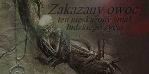 http://sekwencja-rubiezy.blogspot.com/