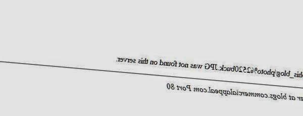 Traductor Sin Internet