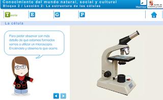 http://recursos.crfptic.es/ambientech/indice_asignatura.swf