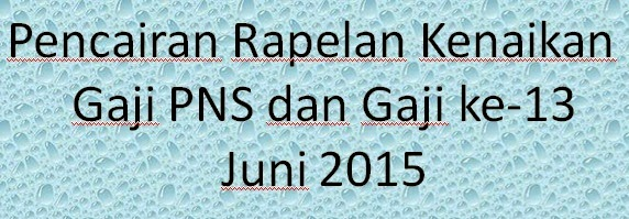 Gaji Pns Newhairstylesformen2014 Com