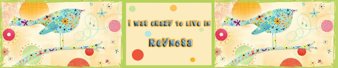 I Was Crazy To Live In Reynosa