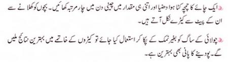 Zubaida APA K Totkay in Urdu