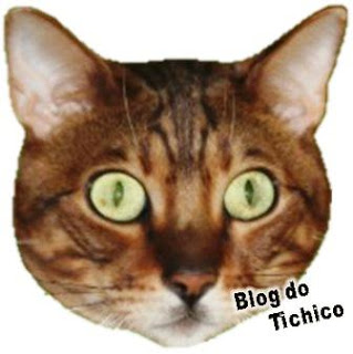 Blog do Tichico