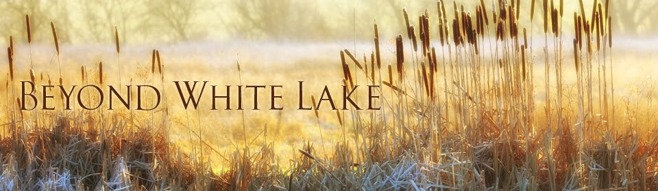 Beyond White Lake