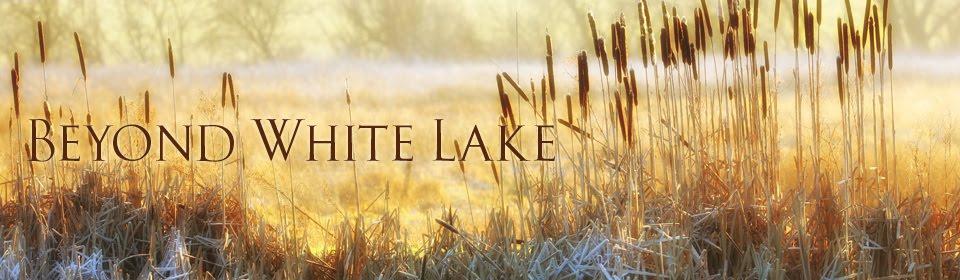 Beyond White Lake