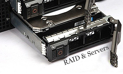 Raid and Servers