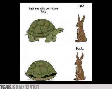 Meme kelinci dan kura-kura