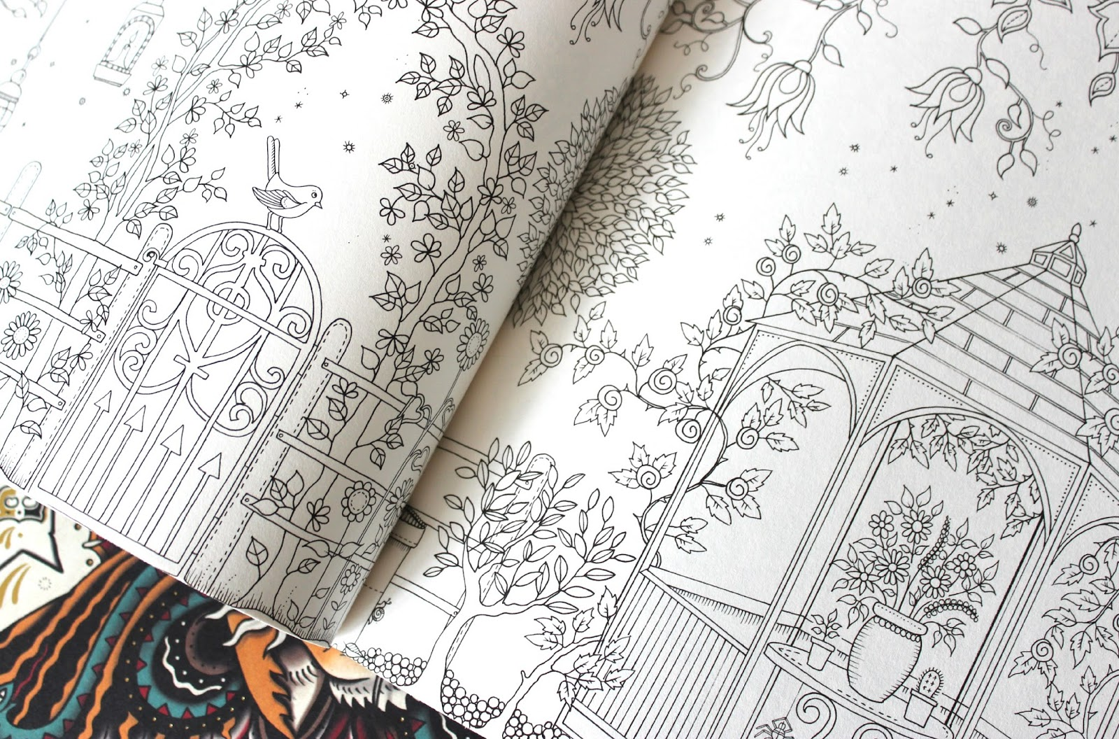A Picture Of The Secret Garden An Inky Treasure Hunt And Colouring Book