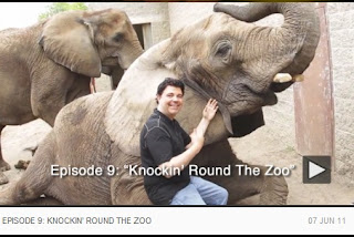 Jim Krenn Raw, Pittsburgh, Episode 9, Sally Wiggin, Pittsburgh Zoo, WDVE
