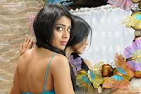 Peru-Mattum-Than-Pavithra-Movie-Stills